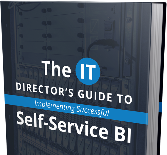 Successful Self-Service BI eBook