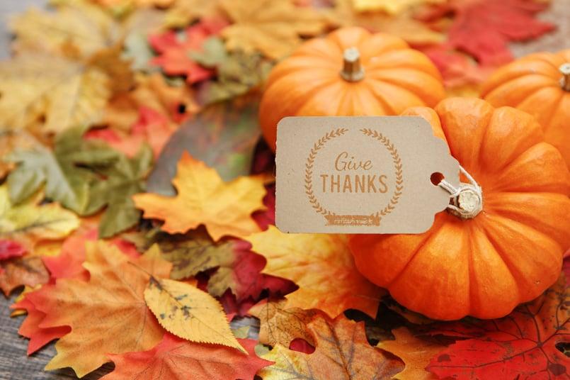 BlueGranite gives thanks