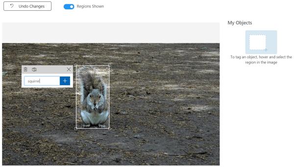 CustomVision-TagObjectSquirrel