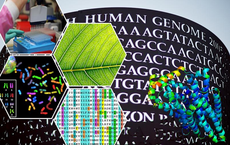 bioinformatics-1.png